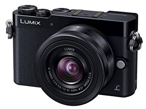 Best Travel Cameras: Panasonic Lumix DMC GM5