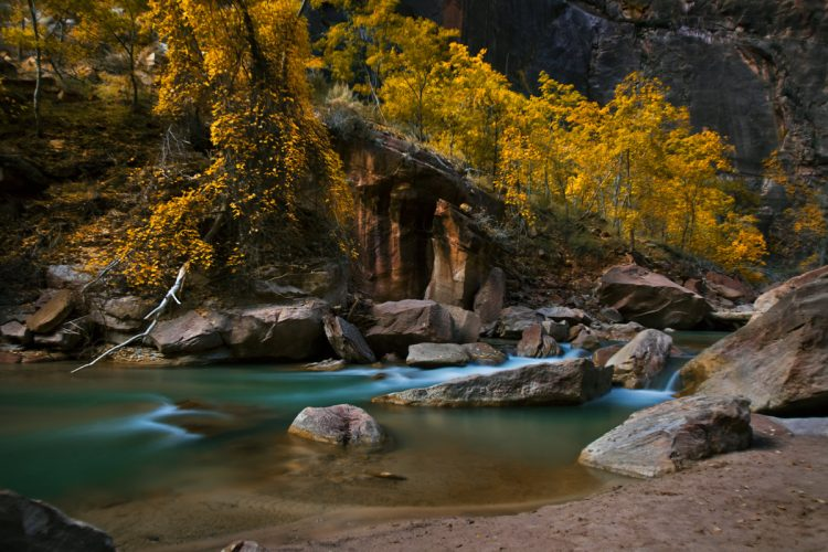 Zion-National-Park-Fall-Colors