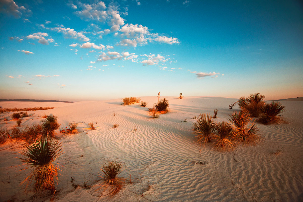 best cell phone with camera with White Sands National Monument Photography Guide on Samsung Galaxy J7 Plus Specs Price Release Date 795894 further Lg K4 2017 Dual Sim Black as well Apple Iphone 5c 8gb together with Toshiba Nb505 N508bl Mini Laptop additionally Audi Tt Rs.