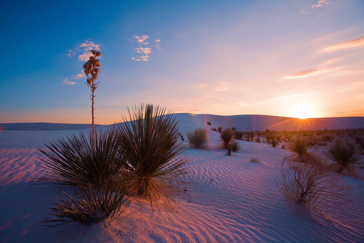 Photography Guide to White Sands National Monument ...